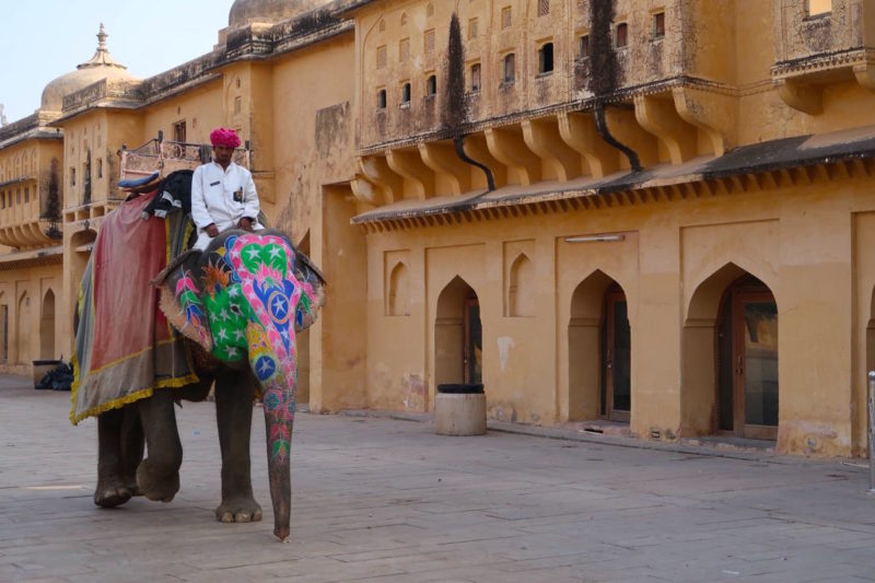 Two days in Jaipur