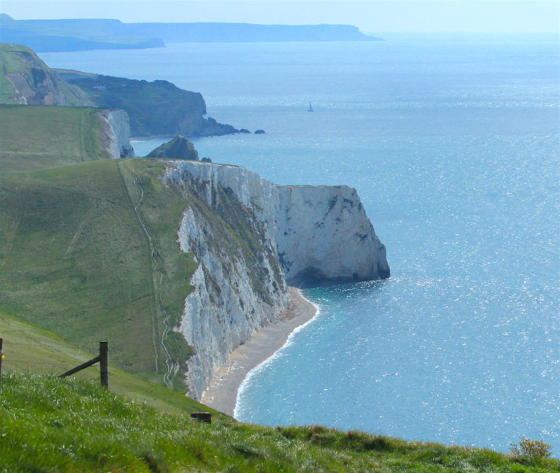 Spring walk: the Purbeck coast