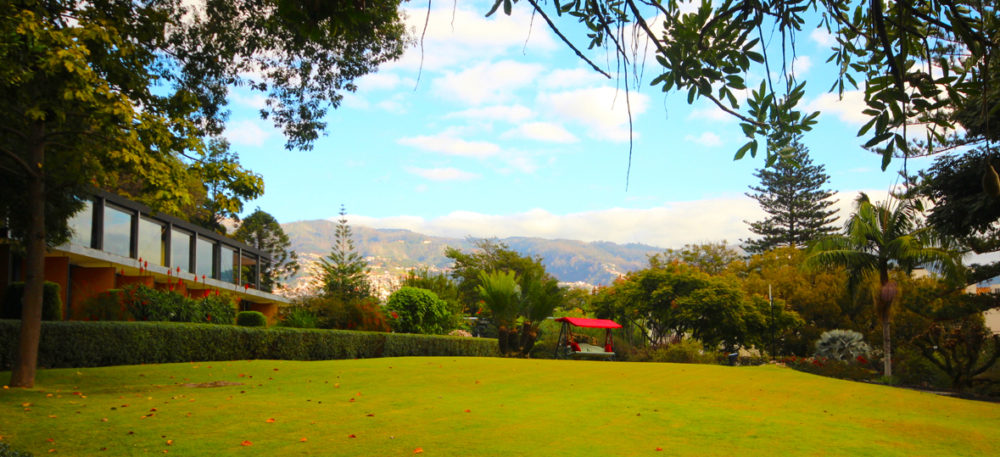 A sublime stay at Quinta da Casa Branca Madeira - Travel with Penelope & Parker
